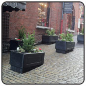 Planters & Hanging Baskets